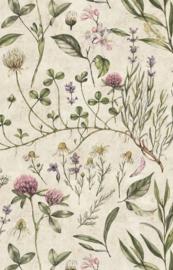 'Vintage Illustration ' Behang