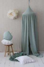 Canopy Mint