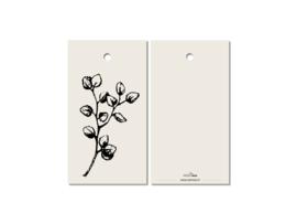 CADEAUKAARTJE | Eucalyptus } Kerst
