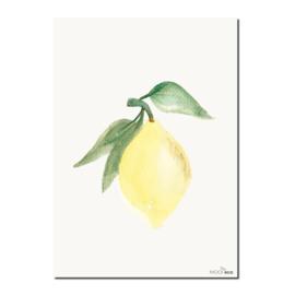 Interieurkaart Lemon