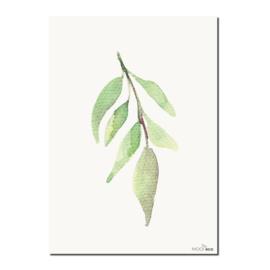 Interieurkaart Leaf