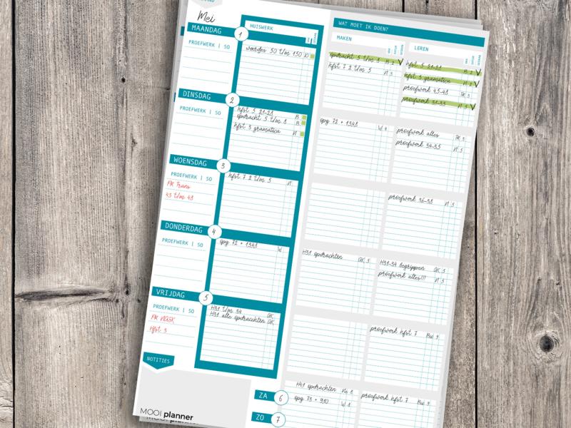 MOOI planner | A3 | huiswerk VO