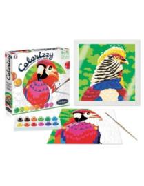 Colorizzy - Schilder op Nummer  - Vogels
