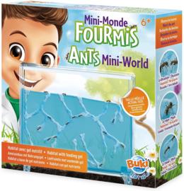 Buki - Kleine wereld van mieren