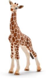 Schleich - Giraffe baby