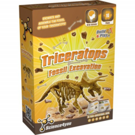SCIENCE 4 YOU - Triceratops Fossil Excavation