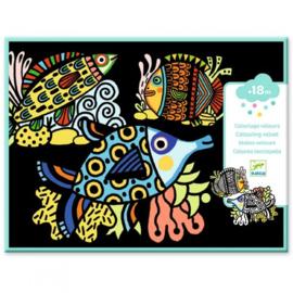 Djeco - Viltkleurplaten - Mooie vissen