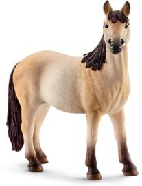 Mustang merrie
