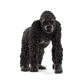 Gorilla vrouwtje