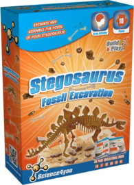 Stegosaurus Fossil Excavation
