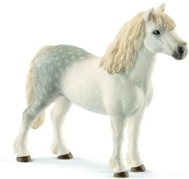 Schleich - Welsh Pony hengst