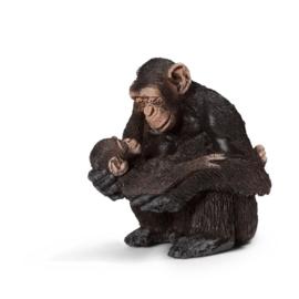 Chimpansee vrouwelijke met Baby