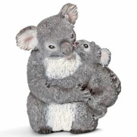 Koala met Baby