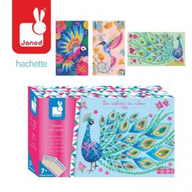 Stickers - Mooie Vogels
