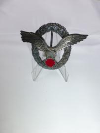 Luftwaffe Piloten abzeichen