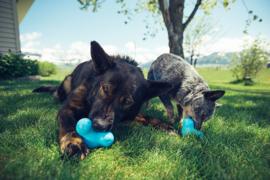 Sterk hondenspeelgoed