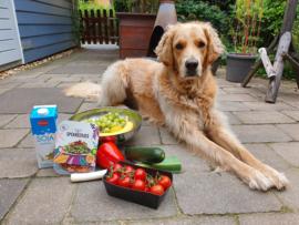 Vegan en een hond in huis