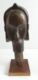 Fang hoofd