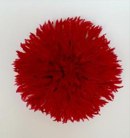 Juju rood 50 cm