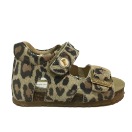FALCOTTO BABY SANDAAL - BEA LEOPARD
