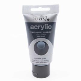 Reeves Acrylic Paint Paynes Gray, tube 75 ml