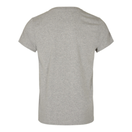 The Analogues logo T-shirt grey