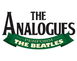 The Analogues Shop