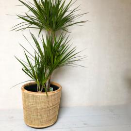 Grote webbing pot-  36x35