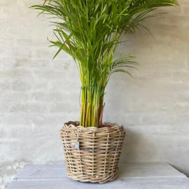 Rotan plantenpot waterdicht- 2 maten