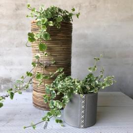 Hoge smalle gevlochten plantenmand