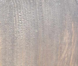 Wandschap steigerhout