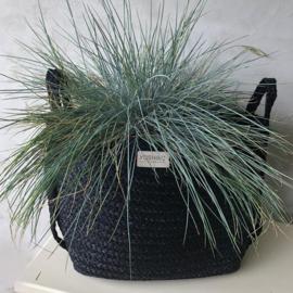 Vierkanten zwarte plant- opbergmand 3 maten