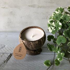 Kokosnoot kaarsen set (3) div. geuren