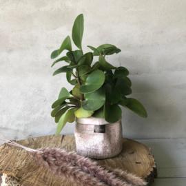 Ecofriendly-bloempotje-licht-roze-(jute)-11x11