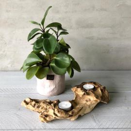 Boomwortel waxinelichthouder- 2 lichtjes