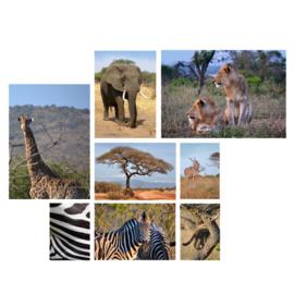 Natuurfoto collages