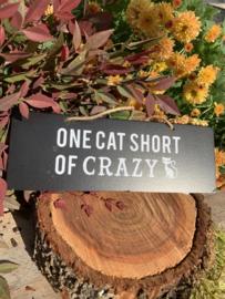 Hanger 'One cat short of crazy'