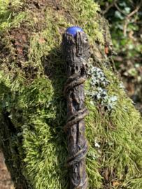Magic Wand Branch/Toverstaf