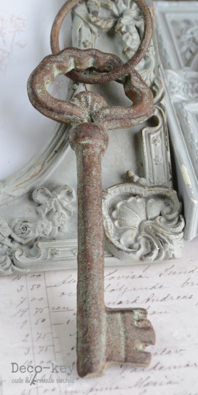 Verweerde oude sleutel met ring