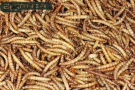 Gedroogde meelwormen 250gram (Mehlwürmer getrocknet)