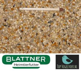 Blattner Miscela Diamante di Gould Speciale 2,5kg (Amadinen-Zucht-Spezial (Goulds)