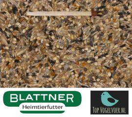 Blattner Miscela Fringillidae Americani 2,5kg (Farbfinken-Spezial)