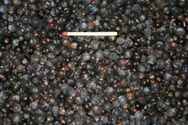 Blattner Dried Juniper Berries 1kg (Wacholderbeeren getrocknet )