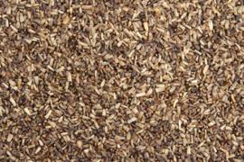 Blattner Graines de Chicorée 1kg (Zichoriensamen)