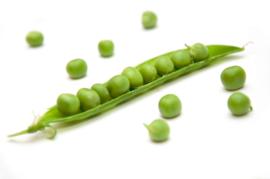 Blattner legume seeds