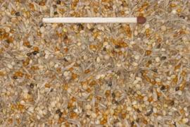 Blattner Germinating Seeds Waxbill Finches Special 2,5kg (Keimfutter-Astrilden-Spezial)