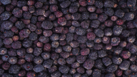 Blattner Dried Aronia Berries 500gram (Aroniabeeren getrocknet)