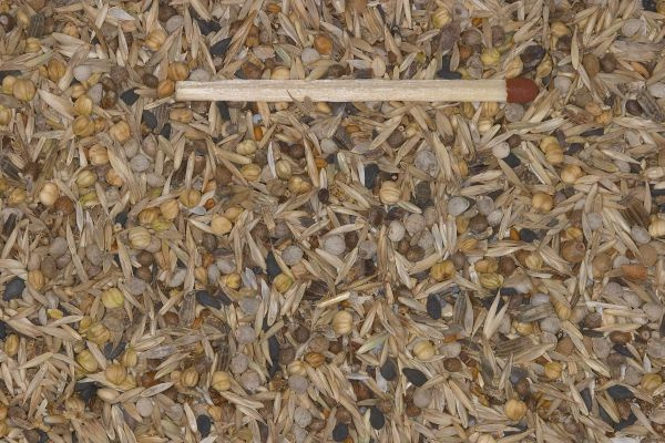 Blattner Graines Sauvages Spécial 5kg (Wildsamen-Spezial-Neu)