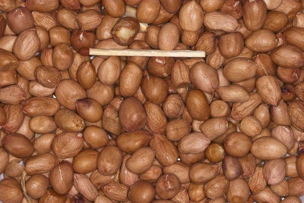 Blattner Pinda gepeld 2,5kg (Erdnüsse geschält ganz)