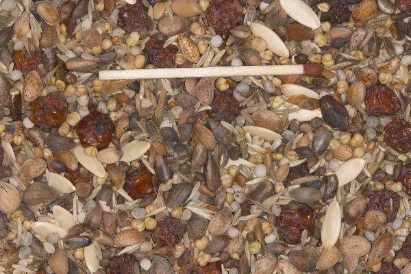 Blattner wilde & boomzaden speciaal 5kg (Wild- u.Baumsamen Spezial)